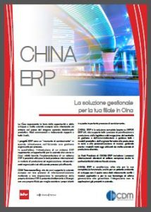 ChinaERP_IT_Ico